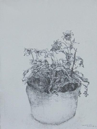 枯树叶手绘素描